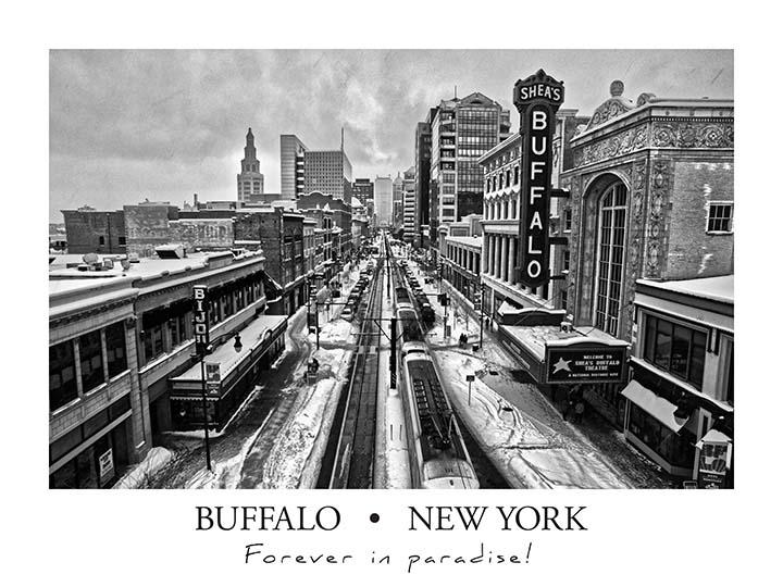 buffalo_poster_bw2