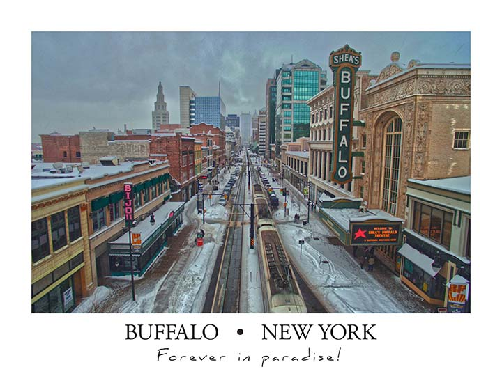 buffalo_poster_color