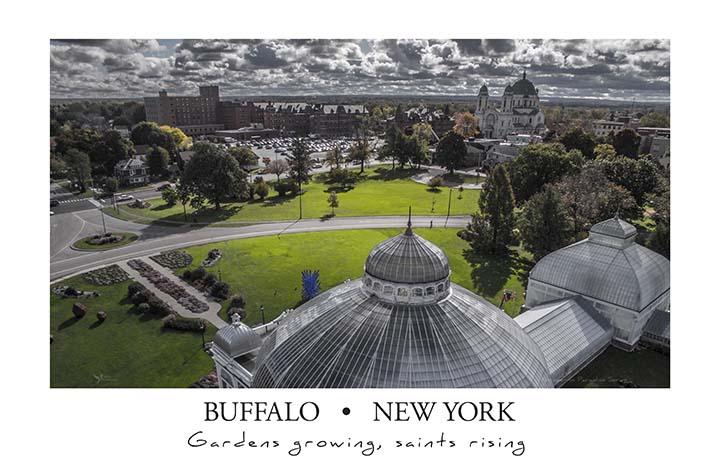 buffalo_gardens